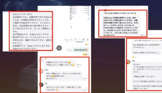 【ZOO(ズーシステム)】FX史上最強のFX自動売買EA+トレーダー監視!日本一記念ウェビナーと超限定キャンペーン緊急告知!