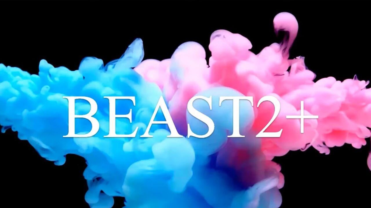 【ビースト2プラス(BEAST2+)】初心者向けFX自動売買システムEAの評判評価は?価格値段は?相性は?弱点は?稼げない?